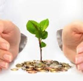 سرمایه گذاری و پایبند بودن به اصولی در این خصوص