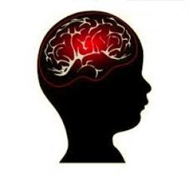 پیچیدگی ذهن کودکان از بدو تولد تا شکل گیری قدرت بیان