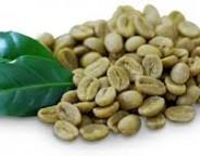 واقعیت هایی در خصوص قهوه سبز و تأثیرات آن روی سلامتی