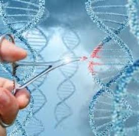 ژن درمانی و ارتباط مستقیم آن با درمان بیماریهای نادر چشم