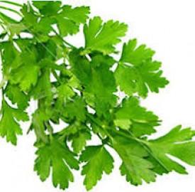 جعفری و 10 فایده ی درمانی این گیاه برای بدن