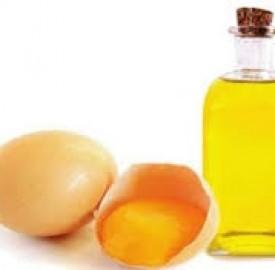 روغن تخم مرغ از روش تهیه تا فواید آن در حوزه زیبایی