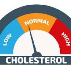 سطح کلسترول و مواد مؤثر در کاهش این فاکتور !