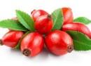 میوه نسترن راه حلی مؤثر برای دفع سنگ کلیه