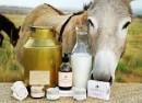 شیر الاغ و تأثیراتی که در جوان سازی پوست دارد ؟
