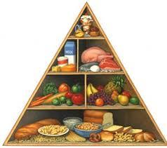 هرم غذایی راز سلامت و طول عمر