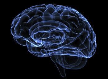 مغز شما چه چیزهایی برای پنهان کردن دارد ؟