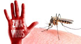 ویروس فرمانرو زیکا سلامت مردم جهان را تهدید می کند !