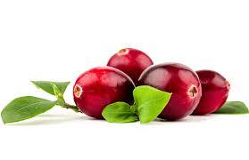 کرنبری میوه ای پرخاصیت و درمانگر قسمتهای مختلف بدن !