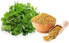 پودر شنبلیله دارویی طبیعی و مؤثر برای درمان دردها