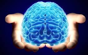 ذهن و ویژگی های منحصربفرد ذهن های هوشیار