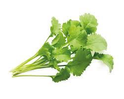 سبزی شاهی چه خواص دارویی و درمانی دارد ؟