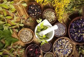 مسکن های گیاهی و هفت نمونه از قویترین آنها