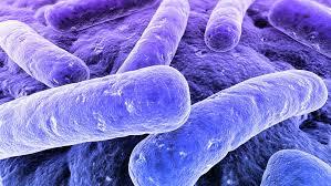 بوتولیسم و توضیحاتی درخصوص این مسمومیت کشنده