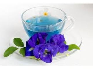عرق گل گاوزبان و خواص بی نظیر آن در طب ایرانی