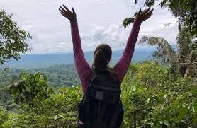 زندگی در جنگل چه تأثیرات مثبتی بر سلامت افراد دارد ؟