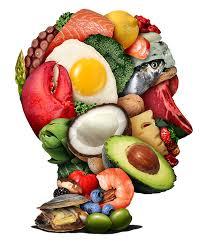 تغذیه و مفهومی کلی از این دانش بشری !
