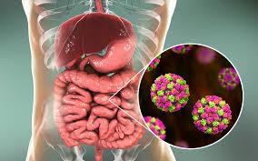 آنفلوآنزای معده و اطلاعاتی درخصوص این بیماری